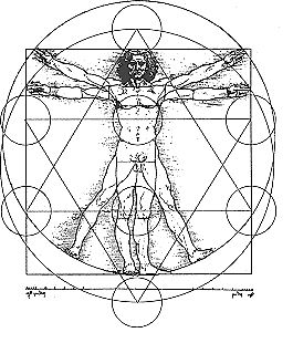 divine proportion